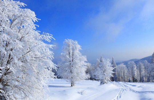 Ski-Hang ist Fit für den Winter